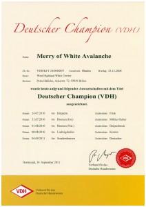 Urkunde_Merry_2011